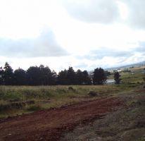 Foto de terreno habitacional en venta en falda del cerro del molcajete, san luis mextepec, zinacantepec, estado de méxico, 1492025 no 01