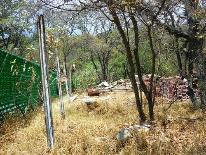 Propiedad similar 2101607 en Fincas de Sayavedra.