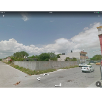 Foto de terreno comercial en renta en  , forjadores, solidaridad, quintana roo, 2591397 No. 01
