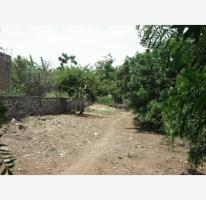 Foto de terreno habitacional en venta en, francisco de flores, tizapán el alto, jalisco, 840263 no 01