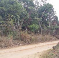 Foto de terreno comercial en venta en, francisco medrano, altamira, tamaulipas, 1730412 no 01