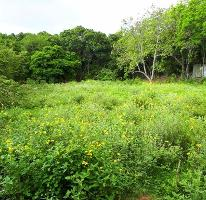 Foto de terreno habitacional en venta en  , francisco medrano, altamira, tamaulipas, 3428040 No. 01