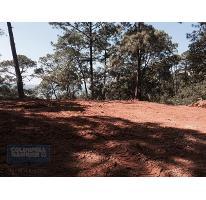 Foto de terreno habitacional en venta en fresno , avándaro, valle de bravo, méxico, 0 No. 01