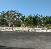 Foto de terreno habitacional en venta en gran pakal 0, sierra papacal, mérida, yucatán, 3297379 No. 01