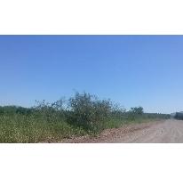 Foto de terreno habitacional en venta en  , granja villa verde, aldama, chihuahua, 1204957 No. 01