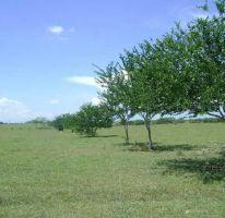 Foto de terreno habitacional en venta en, guayalejo, pánuco, veracruz, 2133634 no 01