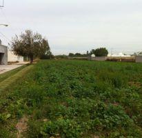 Foto de terreno habitacional en venta en gustavo díaz ordaz sn lote 4, el llano, jesús maría, aguascalientes, 1713790 no 01
