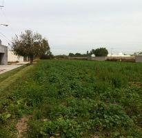 Foto de terreno habitacional en venta en gustavo díaz ordaz s/n lote 4 , el llano, jesús maría, aguascalientes, 0 No. 01