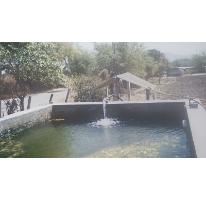 Foto de terreno habitacional en venta en, huitzililla, ayala, morelos, 1684637 no 01