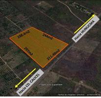 Foto de terreno habitacional en venta en, huncanab, hunucmá, yucatán, 1736670 no 01