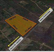 Foto de terreno habitacional en venta en  , hunucmá, hunucmá, yucatán, 1746996 No. 01