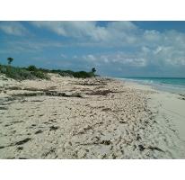 Foto de terreno habitacional en venta en  , isla blanca, isla mujeres, quintana roo, 2316787 No. 01