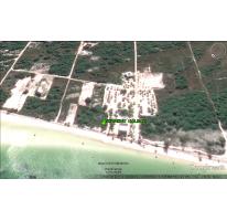 Foto de terreno habitacional en venta en  , isla de holbox, lázaro cárdenas, quintana roo, 2635899 No. 01