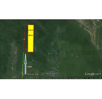 Foto de terreno comercial en venta en  , isla mujeres centro, isla mujeres, quintana roo, 2570624 No. 01