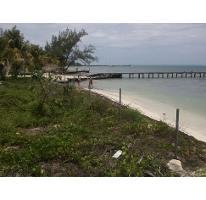 Foto de terreno habitacional en venta en  , isla mujeres centro, isla mujeres, quintana roo, 2624715 No. 01