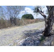 Foto de terreno habitacional en venta en  , islas de cuautla, ayala, morelos, 2675393 No. 01