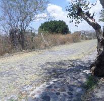 Foto de terreno habitacional en venta en  , islas de cuautla, ayala, morelos, 3852262 No. 01