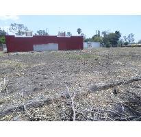 Foto de terreno habitacional en venta en  , islas de cuautla, ayala, morelos, 969999 No. 01