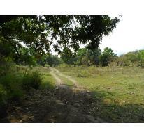 Foto de terreno habitacional en venta en  , itzamatitlán, yautepec, morelos, 1751208 No. 01