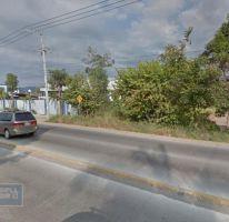 Foto de terreno habitacional en venta en, ixtapa, puerto vallarta, jalisco, 2006610 no 01