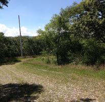 Foto de terreno habitacional en venta en  , ixtapan de la sal, ixtapan de la sal, méxico, 2618634 No. 01
