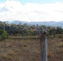 Foto de terreno habitacional en venta en  , jesús del monte, morelia, michoacán de ocampo, 1572404 No. 01