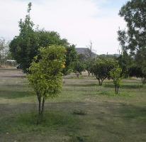 Foto de terreno habitacional en venta en josé guadalupe ramírez álvarez 00, el carmen, el marqués, querétaro, 3254246 No. 01