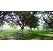 Foto de terreno habitacional en venta en  , josé ortiz (san martín), yautepec, morelos, 2612310 No. 01