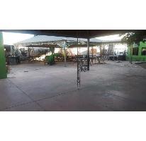 Foto de terreno habitacional en renta en  , juan cota, ahome, sinaloa, 2727647 No. 01