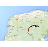 Foto de terreno industrial en venta en  , justicia social, peto, yucatán, 2644767 No. 01