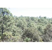 Foto de terreno habitacional en venta en kilometro 4.6 carretera tapalpa-san gabriel 0, tapalpa, tapalpa, jalisco, 2458486 No. 01