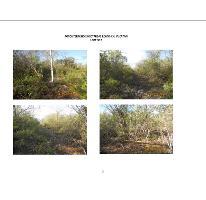 Foto de terreno habitacional en venta en, komchen, mérida, yucatán, 1203897 no 01