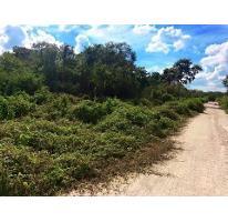 Foto de terreno habitacional en venta en  , komchen, mérida, yucatán, 2144742 No. 01