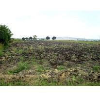 Foto de terreno habitacional en venta en  , la calera, tlajomulco de zúñiga, jalisco, 2808835 No. 01