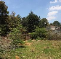 Foto de terreno habitacional en venta en  , la cañada, san cristóbal de las casas, chiapas, 0 No. 01