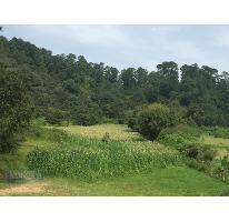 Foto de terreno habitacional en venta en la candelaria , valle de bravo, valle de bravo, méxico, 0 No. 01