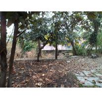 Foto de terreno comercial en venta en  , la carolina, cuernavaca, morelos, 2635302 No. 01
