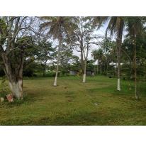 Propiedad similar 1258573 en La Ceiba.