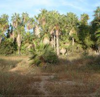 Foto de terreno habitacional en venta en, la esperanza, la paz, baja california sur, 1610756 no 01