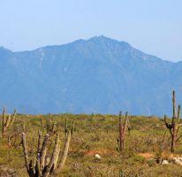 Foto de terreno habitacional en venta en, la esperanza, la paz, baja california sur, 1769844 no 01