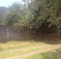 Foto de terreno habitacional en venta en, la esperanza, tlalmanalco, estado de méxico, 1940291 no 01