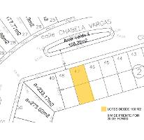 Foto de terreno habitacional en venta en  , la laja, celaya, guanajuato, 1045823 No. 01