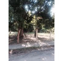 Foto de terreno habitacional en venta en  , la pedrera, altamira, tamaulipas, 2401078 No. 01