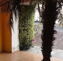 Foto de departamento en renta en  , la pradera, cuernavaca, morelos, 3673721 No. 01