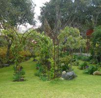 Foto de terreno habitacional en renta en, la primavera, tlalpan, df, 1588287 no 01