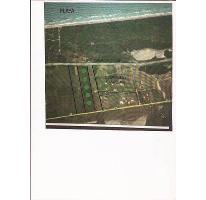 Foto de terreno comercial en venta en  , la rivera, tampico alto, veracruz de ignacio de la llave, 2838136 No. 01