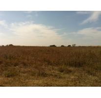 Foto de terreno habitacional en venta en  , la soledad, atlixco, puebla, 1278373 No. 01