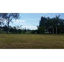 Foto de terreno habitacional en venta en laguna vega escondida 0, residencial lagunas de miralta, altamira, tamaulipas, 2651849 No. 01