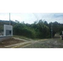 Foto de terreno habitacional en venta en  , las cañadas, zapopan, jalisco, 1313815 No. 01