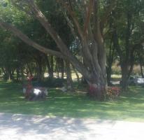Foto de terreno habitacional en venta en, las cañadas, zapopan, jalisco, 905573 no 01